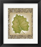Framed Exotic Palm Leaf I