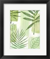 Framed Leaf Impressions IV