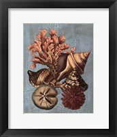Framed Crackled Shell and Coral Collection on Aqua I