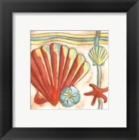 Framed Pop Shells II
