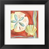 Framed Pop Shells IV