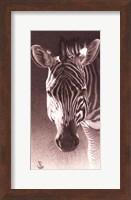 Framed Grant, the Zebra