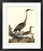 Framed Heron Family I