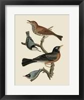 Framed Bird Family I