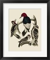 Framed Bird Family III