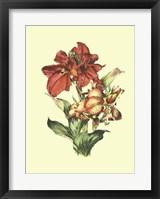 Framed Lush Floral I