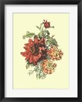 Framed Lush Floral II