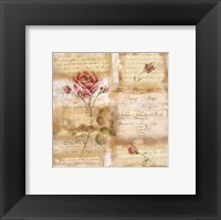 Framed Rose Concerto I