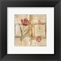Framed Rose Concerto IV