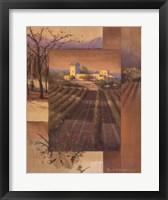 Framed Sunrise Vineyard