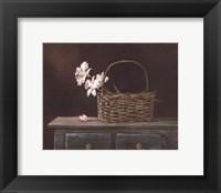 Framed Orchid Basket