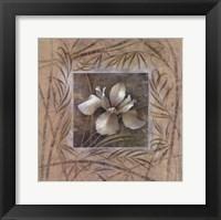 Framed Spa Iris