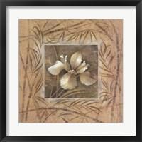 Spa Iris Framed Print