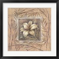 Framed Spa Lily