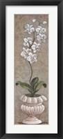 Framed Lavish Orchids I