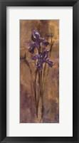 Framed Simply Purple II