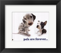 Pals Are Forever Framed Print