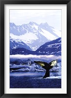 Framed Humpback Whale Tail in Arctic