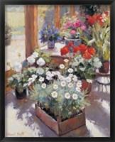 Framed Flowers Pot
