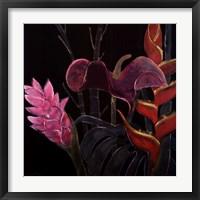 In Bloom I Framed Print