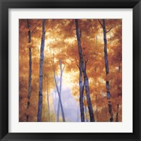 Framed Blue Wood Canopy