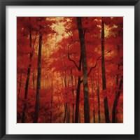 Vermilion Wood Framed Print