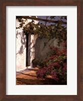 Framed Bougainvillea and Vine