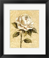Framed Elegant Rose
