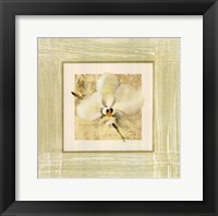 Framed Exotic Floral III