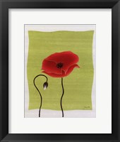 Pretty Poppy Framed Print