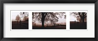 Frosted View Framed Print