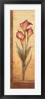 Grandiflora III Framed Print