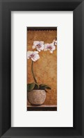 Hanna's Orchids I - petite Framed Print