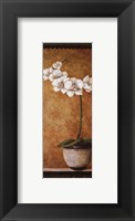 Framed Hanna's Orchids II - petite