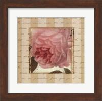 Framed Rose & Romance II