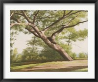 Framed Leaning Tree, 2003
