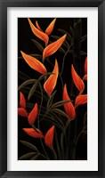Framed Sunburst Blossoms