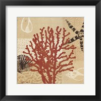 Framed Coral Impressions III