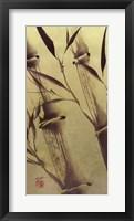 Bamboo's Peace Framed Print