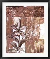 Framed Nature's Orchids I