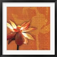 Framed Efflorescence I
