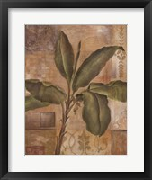 Framed Tropical Spirit I