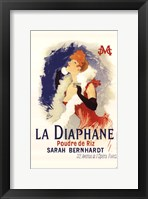 Framed Diaphane