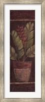 Framed Global Bloom I