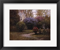 Framed Spring Bloom