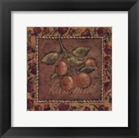 Framed Kumquat