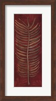 Framed Fern Leaf