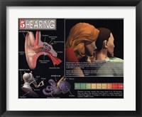 Hearing Framed Print
