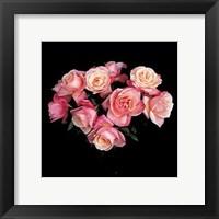 Framed Roses, 1988