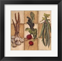 Fresh Veggies II Framed Print
